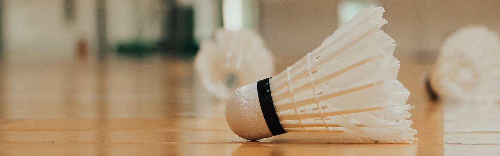 badminton-ssvkau